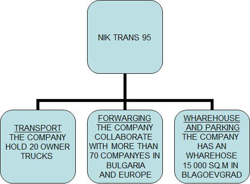nik trans activity